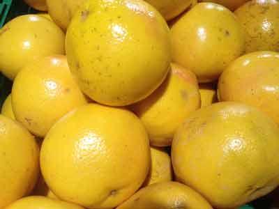 grapefruit helpt bij overgewicht